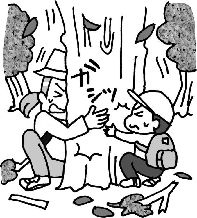 しっかり根の張った大木にしがみつく(イラスト/カツヤマケイコ)