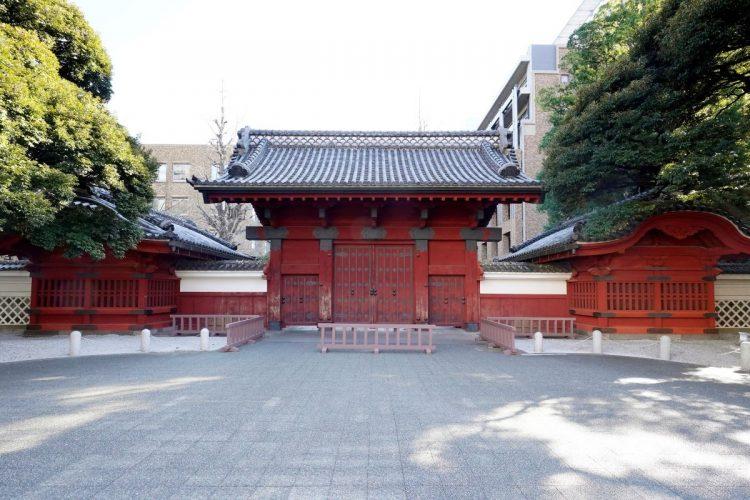 現役合格率が高まっている東京大学(時事通信フォト)