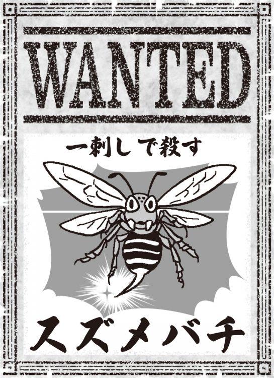 危険な毒を持つスズメバチ