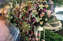 最新銀座事件簿「数百本の祝花が路上を占拠」「明日花キララが殴り込み」